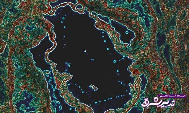 تصویر از کشف ژن جدیدی که مانع ابتلا به بیماری قلبی میشود