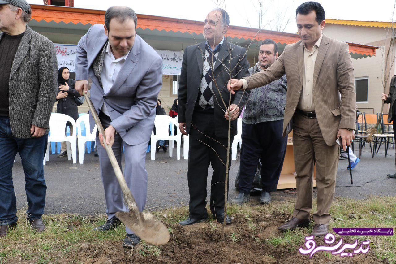 تصویر از کاشت نهال درخت توسط شهردار لاهیجان در آسایشگاه سالمندان