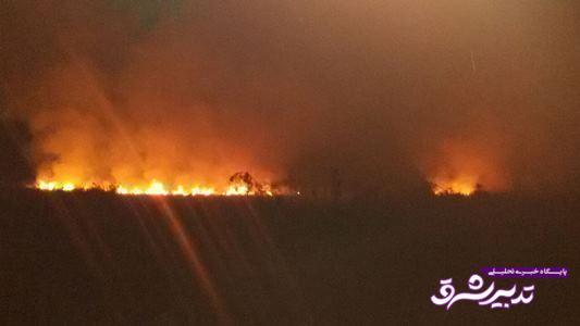 تصویر از مدیرکل حفاظت محیط زیست گیلان: احتمالا آتشسوزی تالاب امیرکلایه عمدی است/ میزان دقیق خسارت وارده در دست بررسی است
