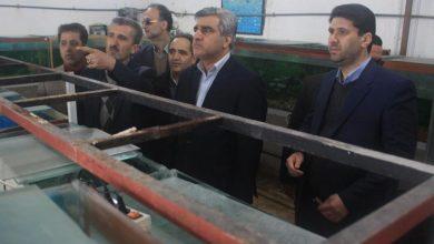 تصویر از نخستین مرکز آموزشی کشت بدون خاک در گیلان افتتاح شد