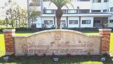 تصویر از اساتید دانشگاه گیلان چقدر بودجه مطالعاتی گرفتند؟