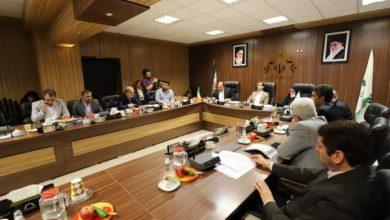 تصویر از ناصر حاج محمدی منتخب جدید شورا برای بررسی صلاحیت به وزارت کشور معرفی می شود / اساسنامه اتاق ایده شورا اعلام وصول شد