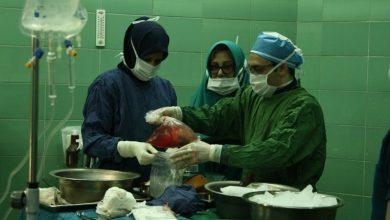 تصویر از رییس دانشگاه علوم پزشکی گیلان خبر داد: انجام دومین انتقال هوایی عضو پیوندی در گیلان