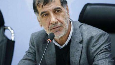 تصویر از باهنر: برخی در شورای اصولگرایی، نیم نگاهی به احمدی نژاد دارند / بدشان نمیآید که از ظرفیت او هم استفاده شود