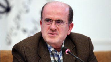 تصویر از مهرداد لاهوتی با انتقاد با نحوه اجرای اصل ۴۴ تأکید کرد: رشت الکتریک پس از واگذاری به بخش خصوصی به جای توسعه تولید؛ فروخته و تعطیل شد