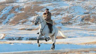 تصویر از کیم جونگ اون سوار بر اسب سفید / آیا تصمیم مهمی در راه است؟