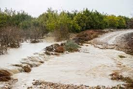 تصویر از مدیرعامل شرکت آب منطقه ای گیلان اعلام نمود:سیلاب باعث آبگرفتی معابر شهری و روستایی و طغیانی شدن رودخانه ها در استان گیلان شد