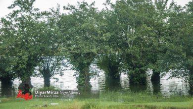 تصویر از رئیس اداره حفاظت محیط زیست آستارا: احیای تالاب ساحلی «آق» آستارا در دستور کار قرار گرفت
