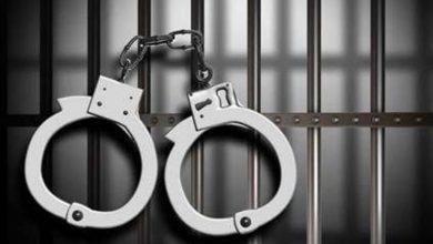 تصویر از ناجا:خواننده لسآنجلسی در تهران دستگیر شد
