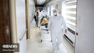 تصویر از پای زوار پاکستانی و اماراتی به ماجرای کرونا باز شد ویروس کرونا در گیلان و قم متفاوت با ویروس ووهان است/احتمال حمله بیوتروریسمی آمریکا قوت گرفت