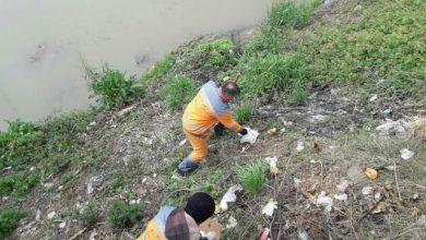 تصویر از گزارش تصویری پاکسازی گروهی حاشیه رودخانه ها در محدوده منطقه دو رشت