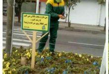 تصویر از لطفاً روی چمن ها، گلها و فضای سبز راه نروید