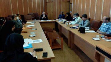 تصویر از مدیرکل سرمایه گذاری استانداری گیلان:تنها راه نجات اقتصاد کشور توسعه کارآفرینی است