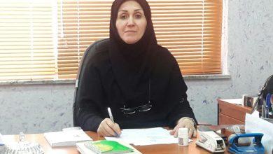 تصویر از یادداشت رئیس اداره فرهنگ و ارشاد اسلامی لاهیجان به مناسبت روز قلم؛ قلم باید سبز ببیند ، سفید بیندیشد و قرمز شکوفا شود