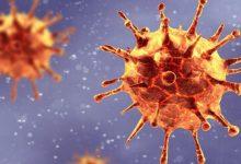 تصویر از رئیس دانشگاه علوم پزشکی گیلان خبر داد؛ بستری شدن ۱۰۴ بیماری جدید کرونایی در گیلان | موج سوم پاندمی کرونا در گیلان آغاز شد