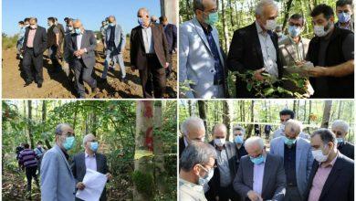تصویر از معاون امور عمرانی استانداری گیلان از پروژه بهسازی محل دفن پسماند لاهیجان بازدید کرد