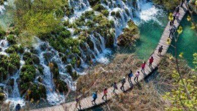 تصویر از ممنوعیت اجرای تورهای گردشگری و طبیعتگردی در گیلان