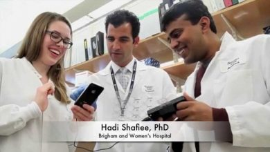 تشخیص باروری زنان
