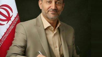 ناصر حاج محمدی