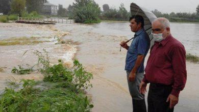 تصویر از بارش کمسابقه ۴۰۰ میلیمتری باران در املش/ سیل خسارت جدی به اراضی شالیکاری زد