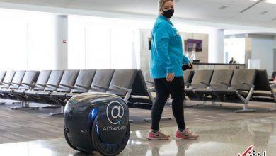 ربات گیتا